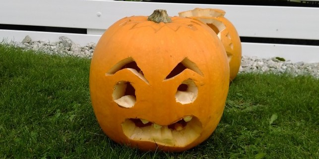 pumpkin 1