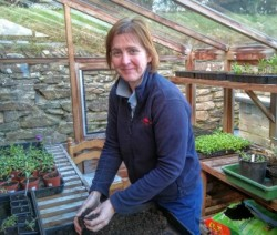 A picture of Alison, the new Head Gardener in her green house