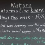 A photograph of Mother Ivey's Bay Holiday Park Reception Wildlife Information Board