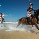 Image of polo horses on Watergate Bay beach.
